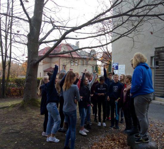 Kvarta se zapojila do mezinárodního projektu Krokus